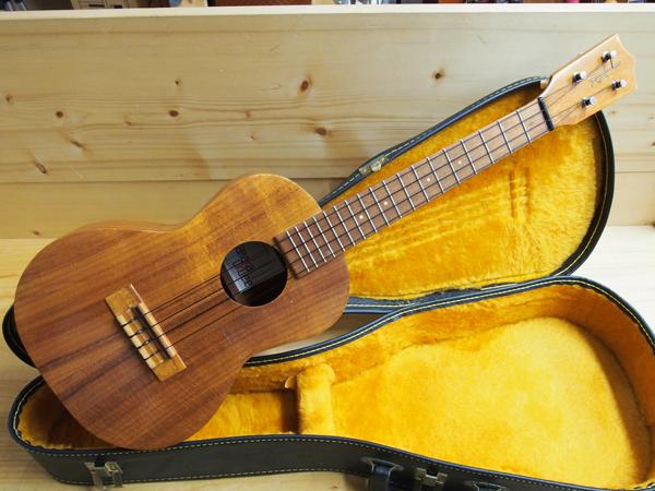ukulele school
